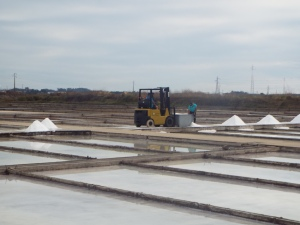 Reviving artisan salt pans on Ilha da Morraceira